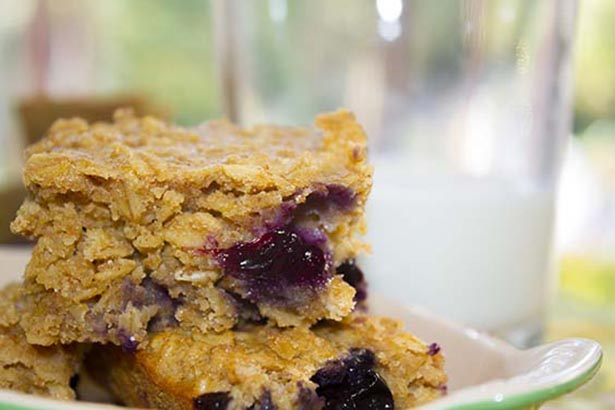 Southeast Dairy Association - berry breakfast bars
