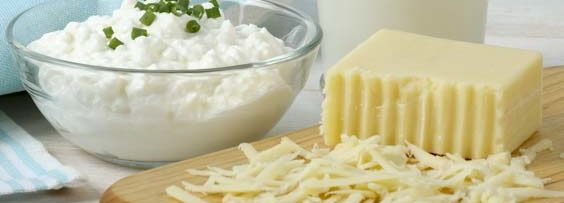 Southeast Dairy Association - Cottage Cheese Sampler