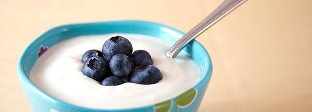 Southeast Dairy Association - Yogurt with blueberries