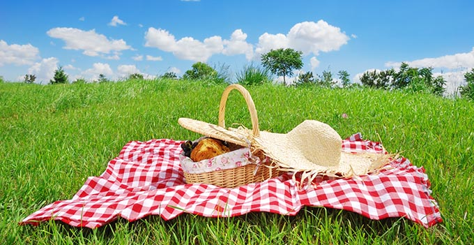 Southeast Dairy Association - Outdoor picnic