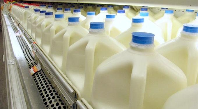 Southeast Dairy Association - Milk cartons
