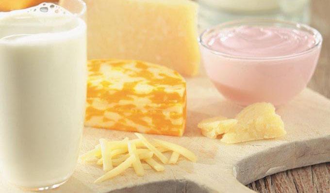 Southeast Dairy Association - Milk, Cheese, Yogurt Assortment