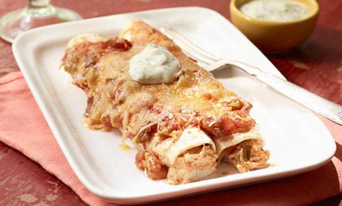 Southeast Dairy Association - Easy Cheesy Chicken Enchiladas with Yogurt Sauce
