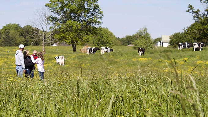 Southeast Dairy Association - Glo-Crest Dairy